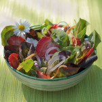 Red and Green Lettuce Salad